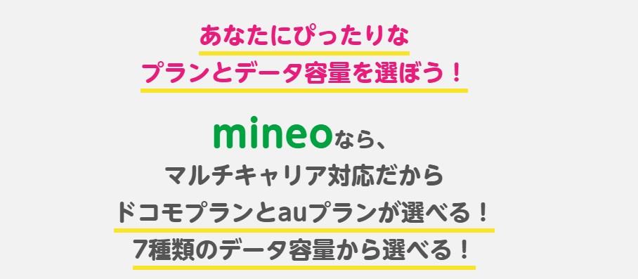 mineoの料金プランを詳しく知って携帯料金を安く抑えるには