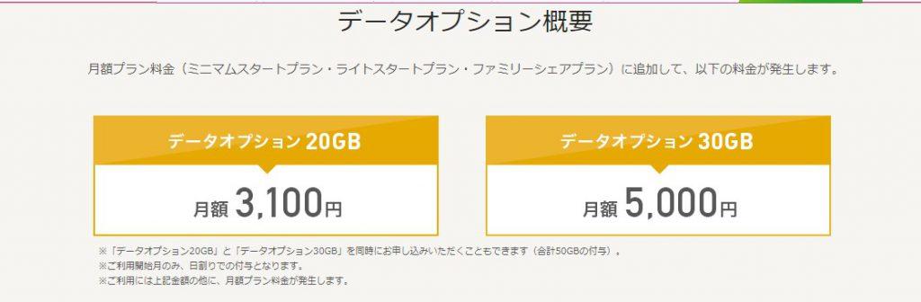 IIJmioのデータオプション付与時の携帯料金がわかりづらいデメリット